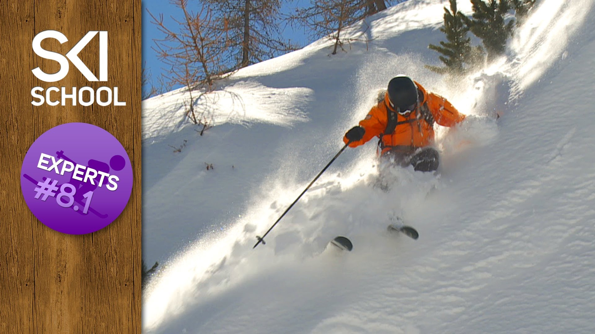 an analysis of skiing Abstractin this study, we used the hedonic price method to examine what affected one-day ski lift ticket prices in norway in the winter season 2014/2015 the analysis was based on geographic information, supply-related characteristics and on climatic data of 83 alpine ski resorts.